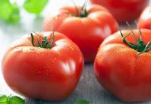 Стратегический товар: Турция надеется, чтоРФувеличит квоту наимпорт помидоров