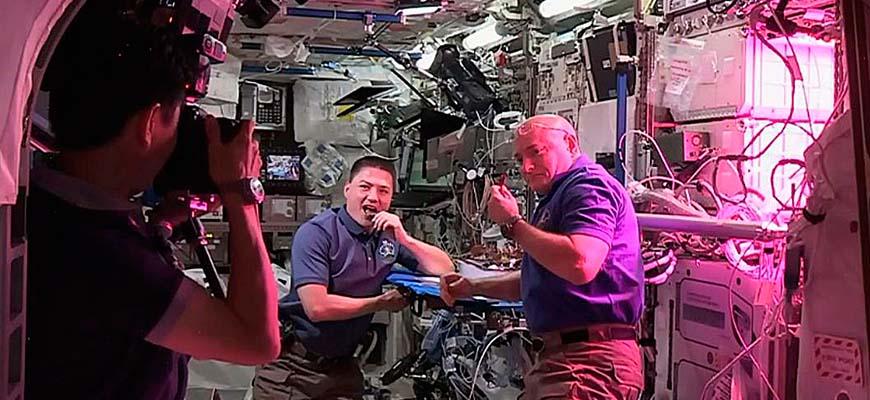 В 2015 году американские астронавты вырастили на МКС салат-латук. И, похоже, немедленно его съели.