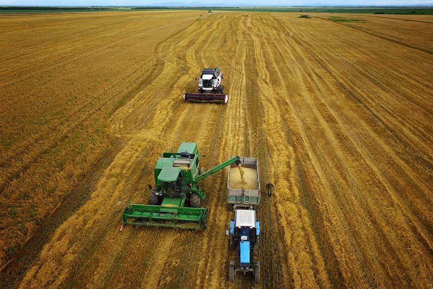 В Белгороде создадут сервис прогноза урожайности