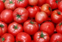 В Дагестане не пустили на прилавки 67 тонн опасных овощей из Азербайджана