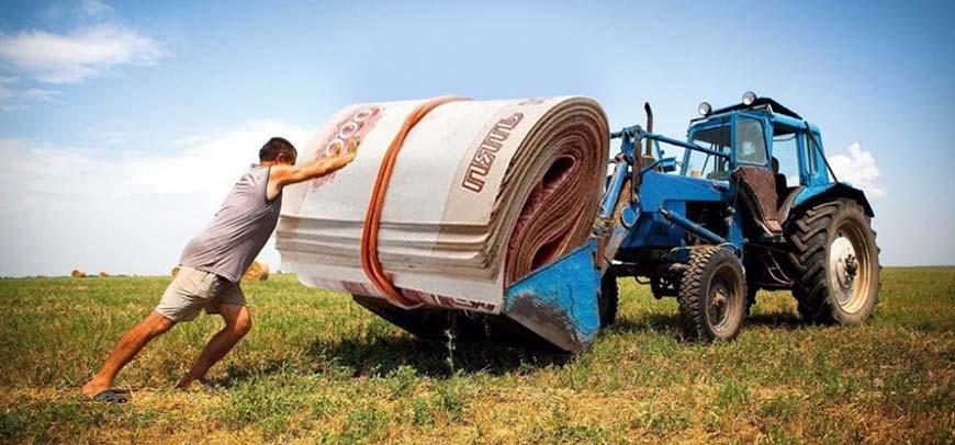В южных регионах России совершенствуют формы поддержки сельхозпроизводителей