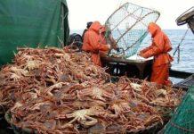 Аргентина и Россия договорились о научном сотрудничестве в области рыболовства