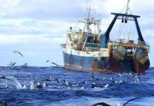 Британские военные корабли будут пресекать рыбный промысел компаний из ЕС