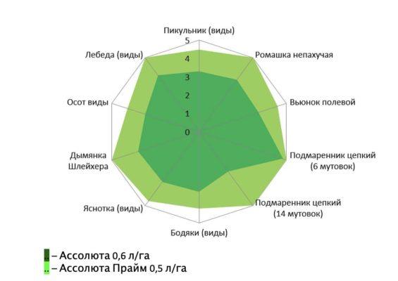 Рис. 3. Эффективность действия Ассолюты и Ассолюты Прайм