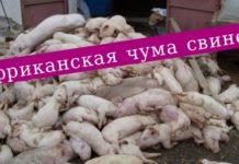 Эпизоотическая ситуация по особо опасным болезням животных в мире с 14 по 20 марта 2020 года
