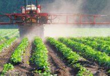 Глава Минсельхоза Франции называл глифосат залогом кустойчивому сельскому хозяйству