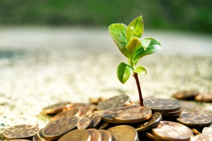 Мишустин: Россия занимает 7-е место в мире по притоку иностранных инвестиций в аграрную отрасль
