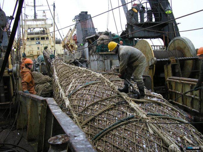 Мурманская область: Вылов рыбы в Северном бассейне вырос до 89,68 тысяч тонн