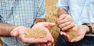 Профессия агронома не потеряет актуальность в XXI веке