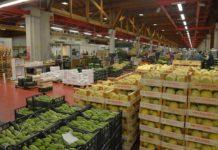 Россельхознадзор упростил порядок ввоза продукции в Россию