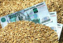 Российский зерновой рынок: цены движутся разнонаправлено