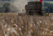 В 2019 году Россия перевыполнила плановые показатели экспорта продукции АПК — Патрушев