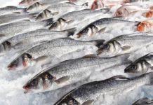 В Росрыболовстве оценили влияние коронавируса на экспорт рыбы