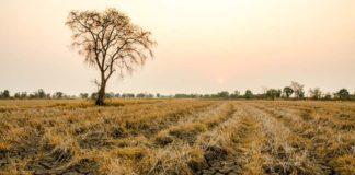 Изменение климата приведет к увеличению районов с постоянной засухой
