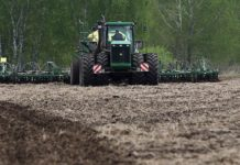 Яровые зерновые в России посеяны на площади 4,2 млн млн га — Минсельхоз
