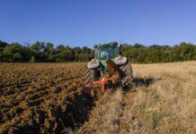 Эксперты заявили оросте интереса россиян кработе всельском хозяйстве