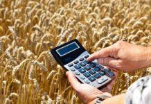 Минсельхоз России увеличил на 20% объем субсидий на льготное краткосрочное кредитование