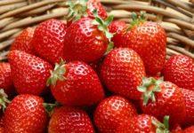 Описание лучших сортов клубники: урожайные и сладкие