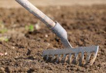 Подготовка почвы для посева и рассады
