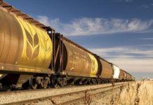 Правительство ввело временную квоту на экспорт зерновых