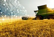 Ростех иМинсельхоз России займутся цифровизацией сельского хозяйства