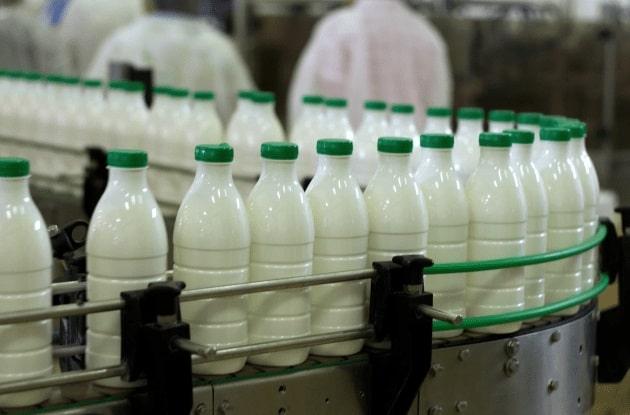 У «ЭкоНивы» растет себестоимость молока