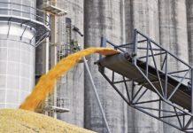 В Саратовской области элеватор завышал цены на отгрузку зерна