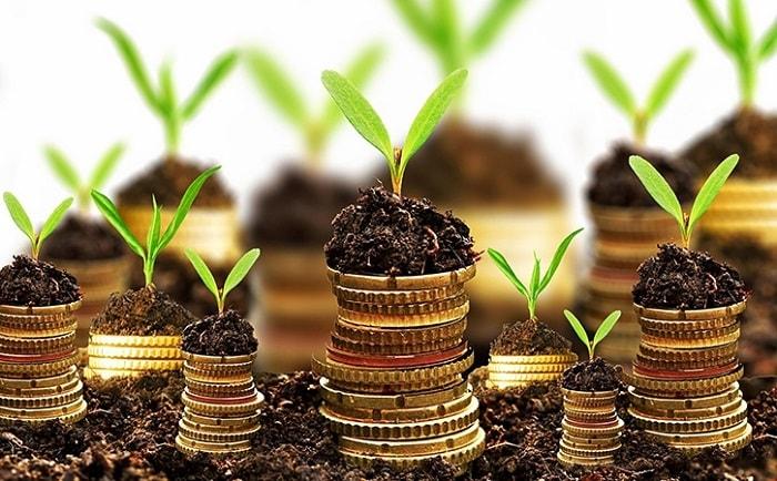 Photo of Для поддержки подмосковных аграриев в 2020 году выделят 7 млрд рублей