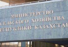Казахстан планирует возобновить экспорт продовольственных товаров