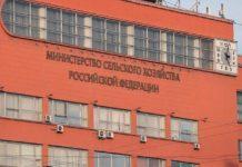 Минсельхоз отказался запретить ввоз ГМО-продукции в Россию