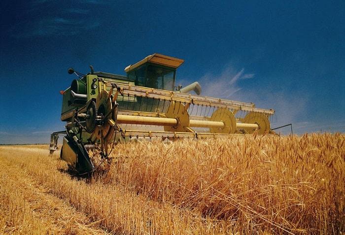 Photo of Прогнозы урожая зерна продолжают снижаться
