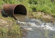 Суд ограничил деятельность молочно-товарной фермы Курской области за грубые нарушения правил сбора и утилизации биологических отходов