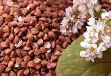 В 2020 году в России увеличится сев сельхозкультур для производства круп
