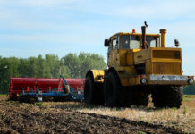 В Саратовской области в 2020 году увеличат посевные площади