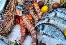 Впервые с сентября 2018 года Норвегия столкнулась с падением экспорта морепродуктов