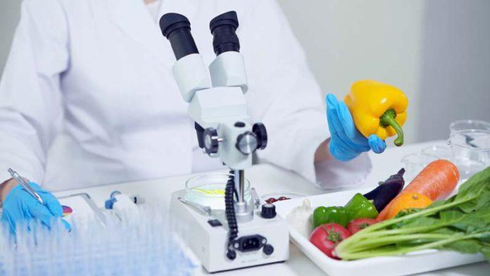 Исследование искусственное мясо в ближайшие годы займет 10% всего мясного рынка
