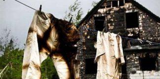 Почему у Новозеландских фермеров взрывались штаны