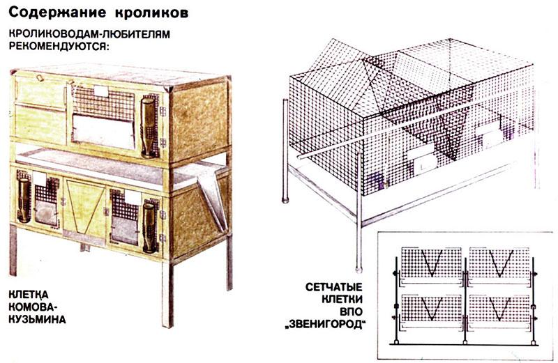 Содержание кроликов в клетках на открытом воздухе