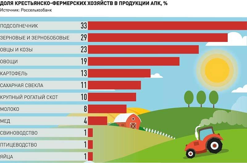Photo of Торговые сети обещают особые условия для фермерской продукции