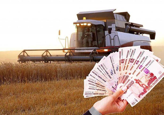 40-летний глава КФХ под Волгоградом присвоил 4,8 млн грантов