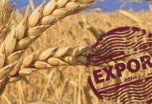 Экспорт сельхозпродукции в России резко увеличился