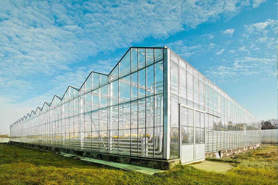 Photo of Льготное кредитование для тепличных комплексов планируют увеличить до 12 лет