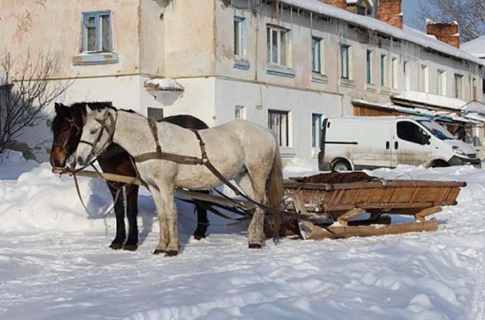 Лошади защитили крестьян от незаконной повинности