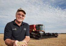 Рекордная урожайность пшеницы от новозеландского фермера
