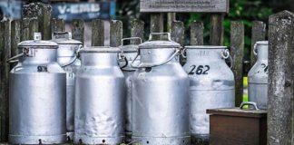 Россиянам хотят запретить ходить за молоком с бидонами
