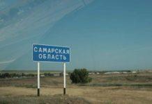Россельхознадзор уведомляет о ситуации по африканской чуме свиней на территории Самарской области