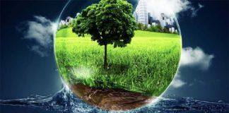 Сельскохозяйственные удобрения и животноводство загрязняют окружающую среду азотом