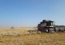 Земли Дагестана передадут более трудолюбивым сельхозпроизводителям