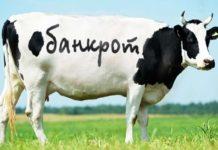 Банкротство фермерского хозяйства