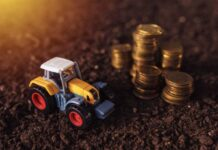 Как платить налог на землю КФХ